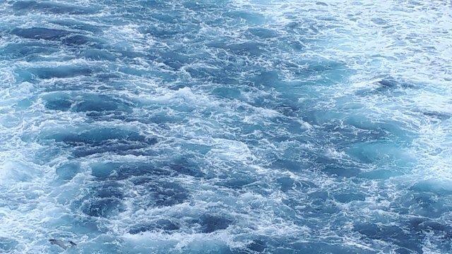 美しい佐渡の海.jpg